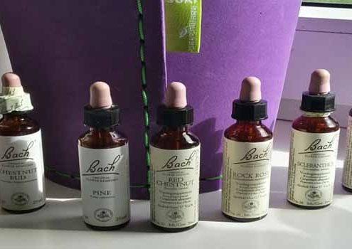 Bach Bloesem therapie flesjes - Bach Bloesem november aanbieding